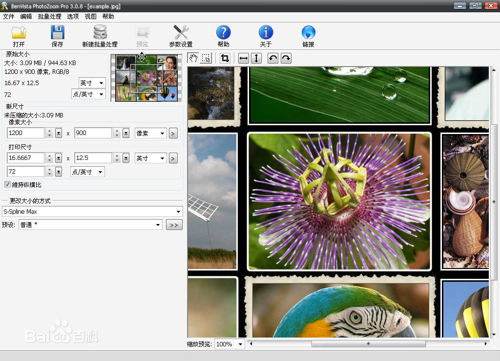 PhotoZoom Pro截�D1